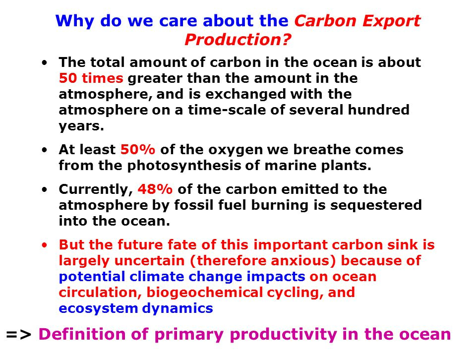 Why do we care about the Carbon Export Production.