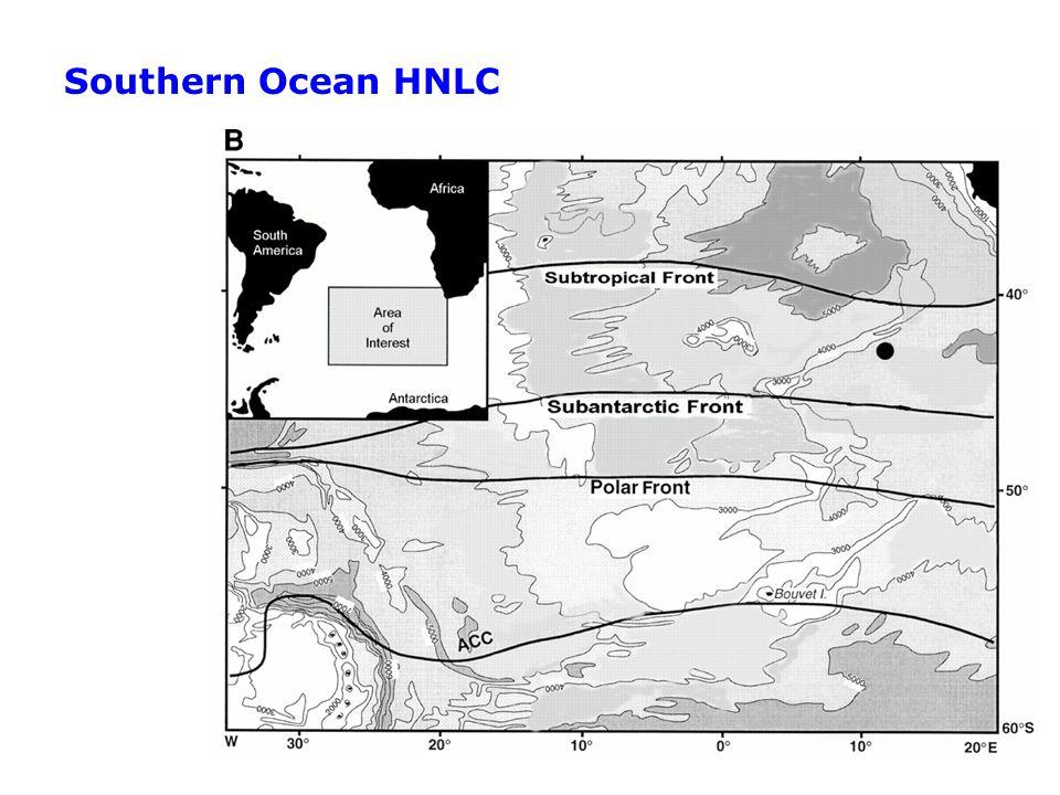 Southern Ocean HNLC