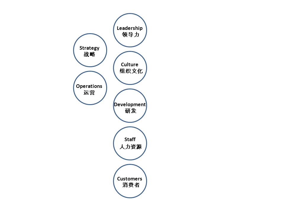 Operations 运营 Customers 消费者 Leadership 领导力 Culture 组织文化 Strategy 战略 Staff 人力资源 Development 研发