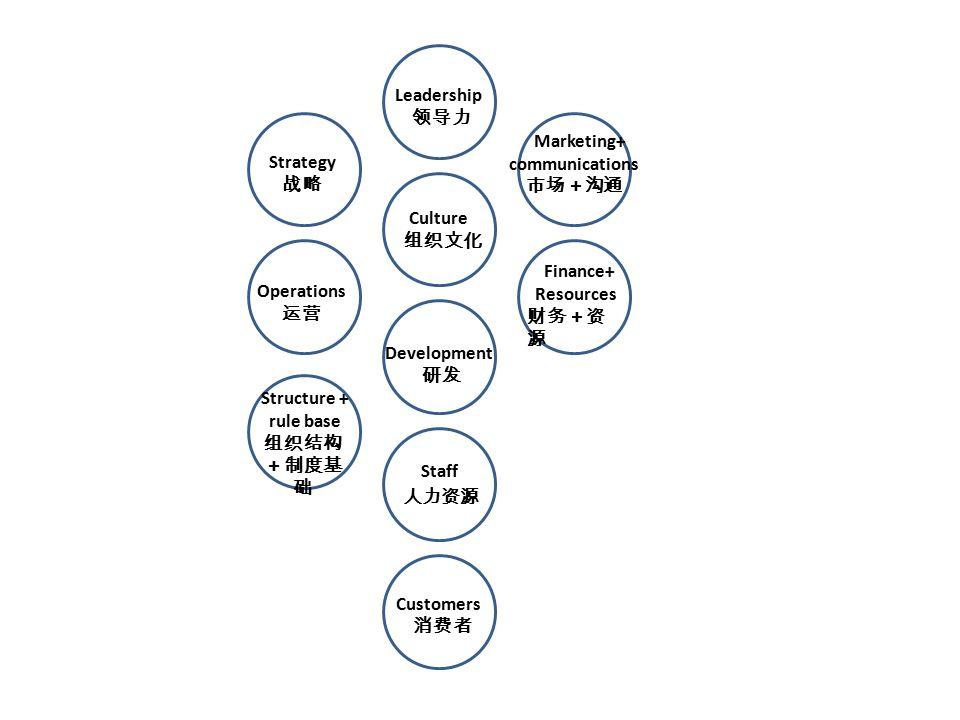 Finance+ Resources 财务+资 源 Structure + rule base 组织结构 +制度基 础 Operations 运营 Customers 消费者 Leadership 领导力 Culture 组织文化 Strategy 战略 Staff 人力资源 Development 研发 Marketing+ communications 市场+沟通