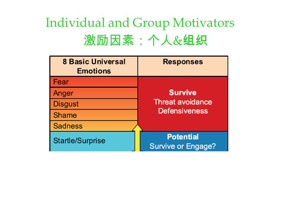 Individual and Group Motivators 激励因素:个人 & 组织