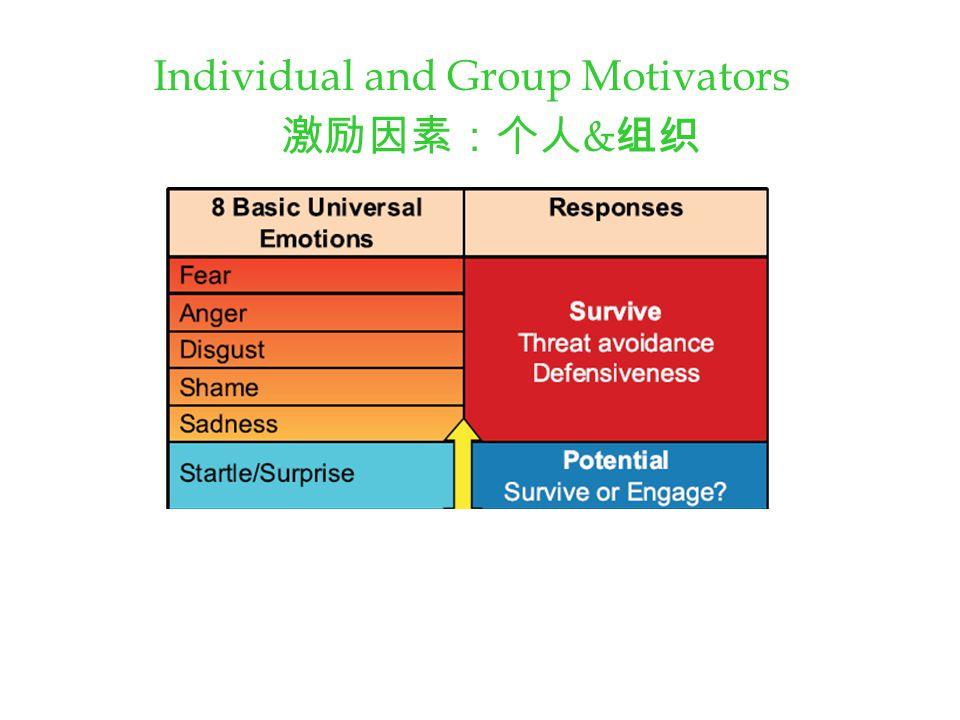 Individual and Group Motivators 激励因素:个人 & 组织