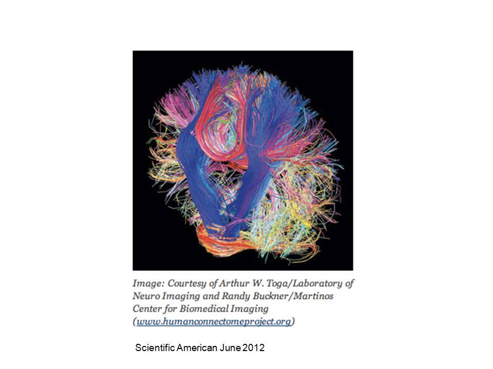 Scientific American June 2012