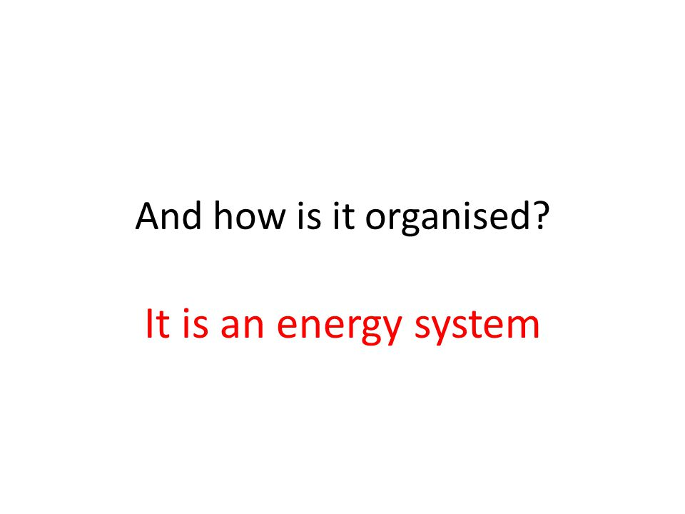 And how is it organised It is an energy system