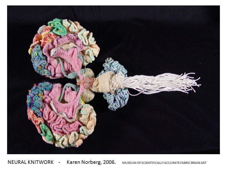NEURAL KNITWORK - Karen Norberg, 2006. MUSEUM OF SCIENTIFICALLY ACCURATE FABRIC BRAIN ART