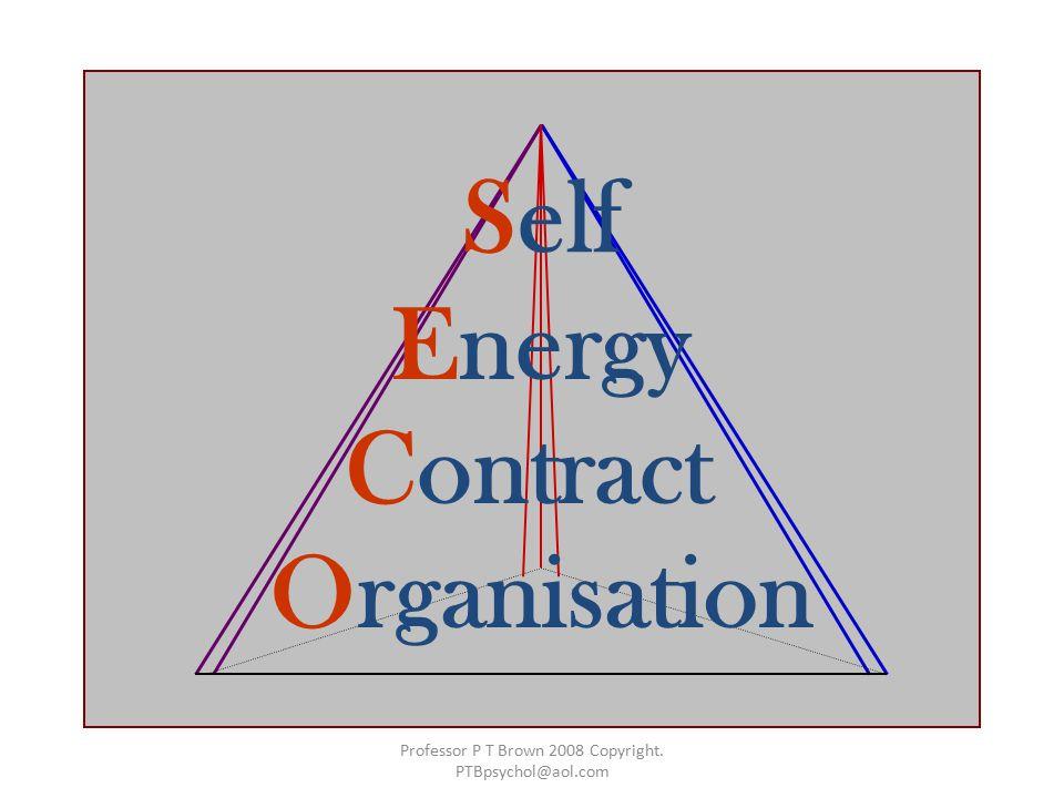 Self Energy Contract Organisation Professor P T Brown 2008 Copyright. PTBpsychol@aol.com