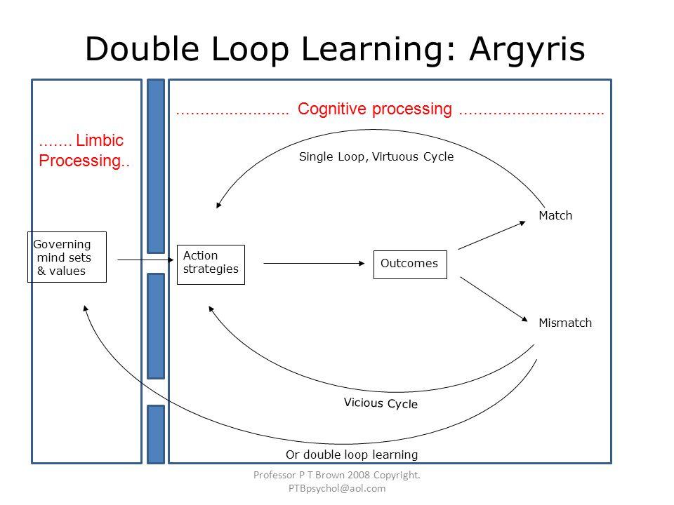 Double Loop Learning: Argyris Single Loop, Virtuous Cycle Professor P T Brown 2008 Copyright.
