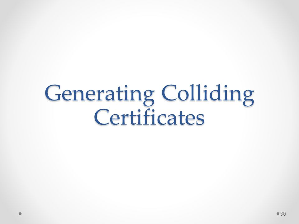 Generating Colliding Certificates 30