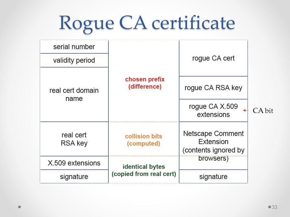 Rogue CA certificate CA bit 33
