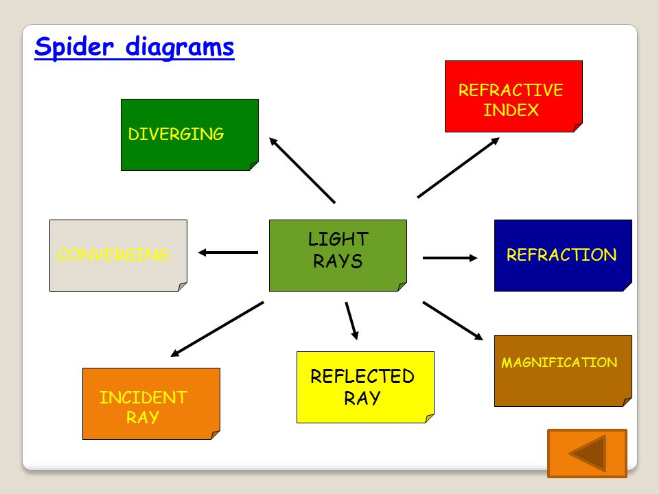 Spider diagrams LIGHT RAYS DIVERGING INCIDENT RAY REFLECTED RAY REFRACTIONCONVERGING REFRACTIVE INDEX MAGNIFICATION