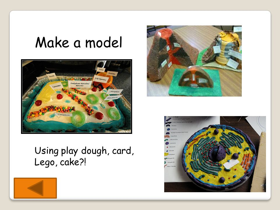 Make a model Using play dough, card, Lego, cake !