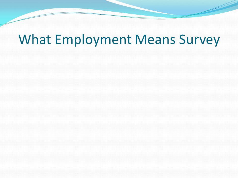 What Employment Means Survey
