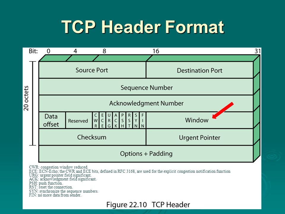 TCP Header Format CWR: congestion window reduced.