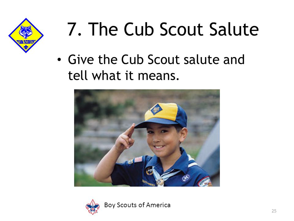 Give the Cub Scout salute and tell what it means. 25 7. The Cub Scout Salute Boy Scouts of America