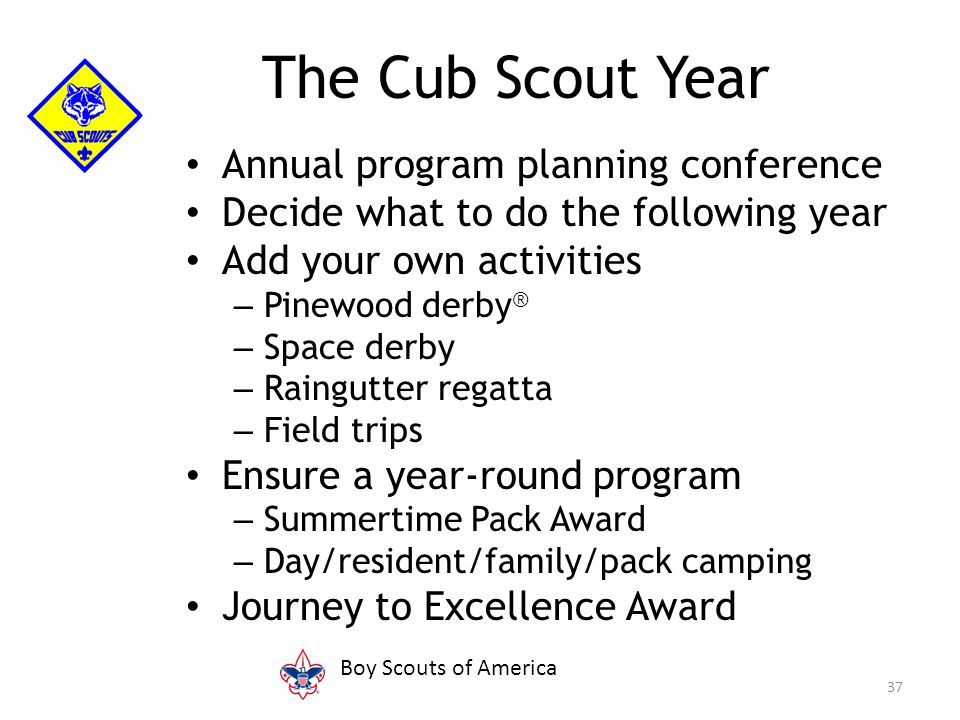Annual program planning conference Decide what to do the following year Add your own activities – Pinewood derby ® – Space derby – Raingutter regatta – Field trips Ensure a year-round program – Summertime Pack Award – Day/resident/family/pack camping Journey to Excellence Award 37 The Cub Scout Year Boy Scouts of America