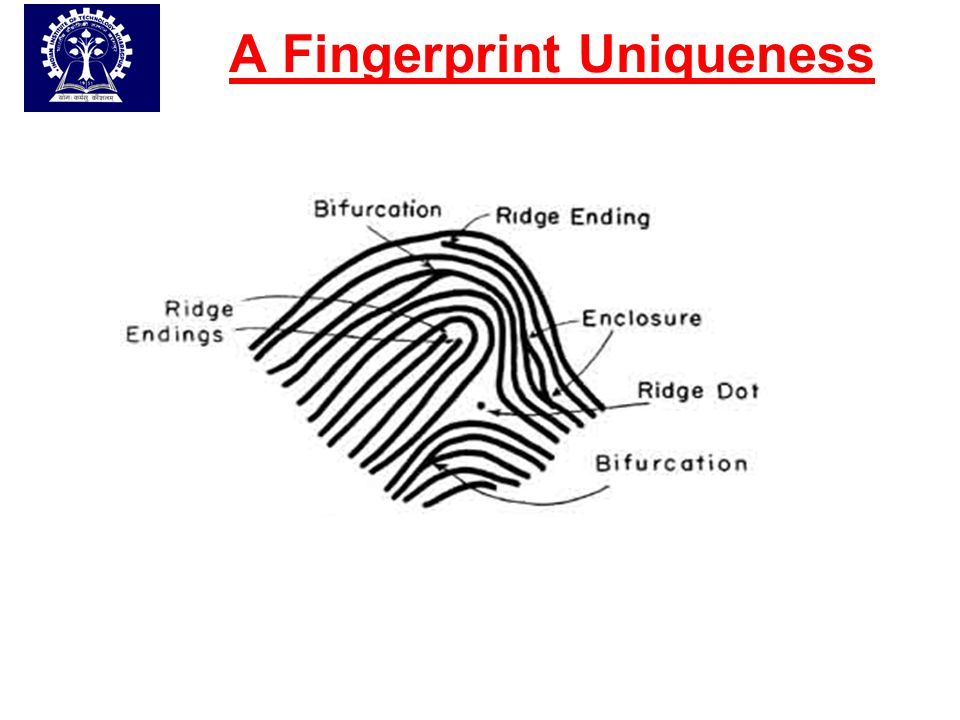 A Fingerprint Uniqueness