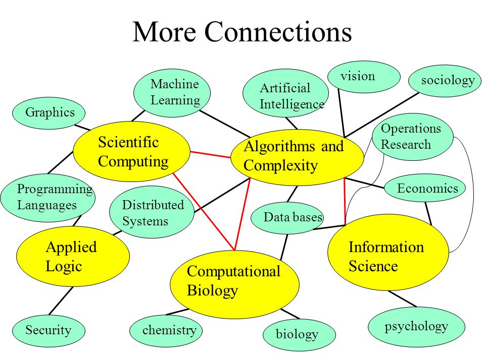 More Connections Information Science Algorithms and Complexity Computational Biology Scientific Computing Applied Logic Economics visionData basesGraphicsbiologychemistrySecurityMachine Learning Distributed Systems Programming Languages Artificial Intelligence Operations Research psychology sociology