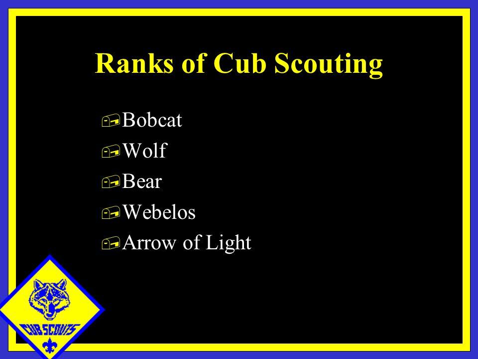 Ranks of Cub Scouting, Bobcat, Wolf, Bear, Webelos, Arrow of Light