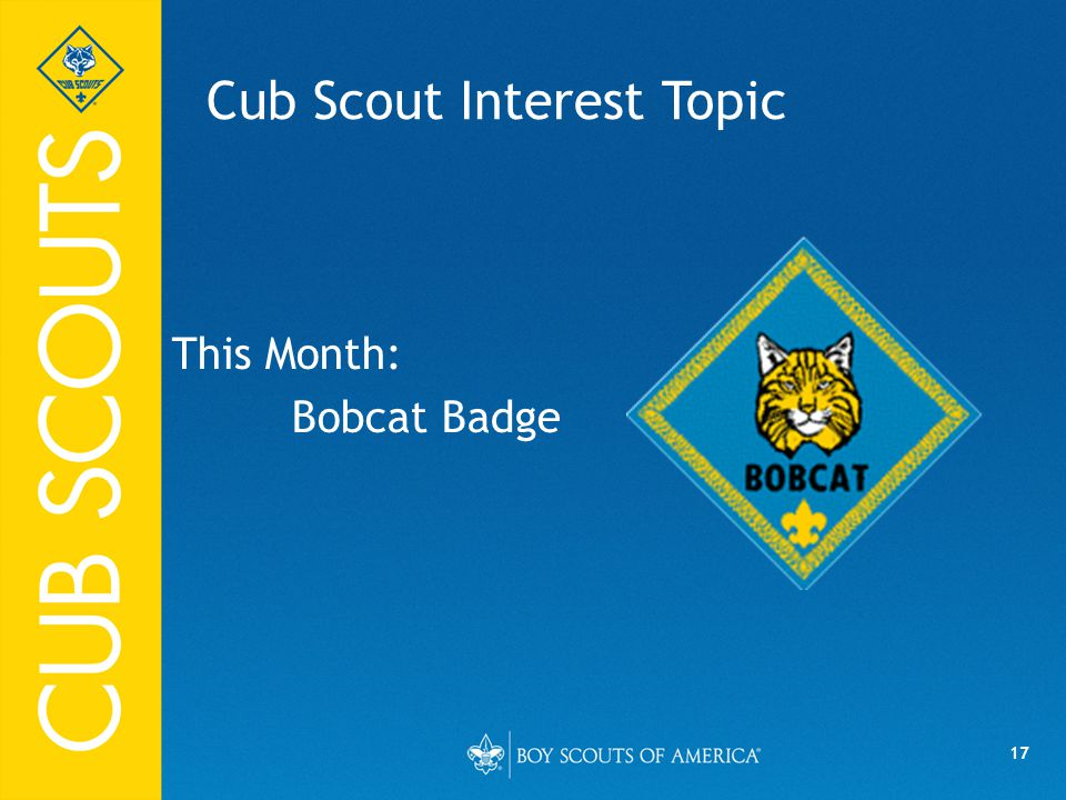 17 Cub Scout Interest Topic This Month: Bobcat Badge