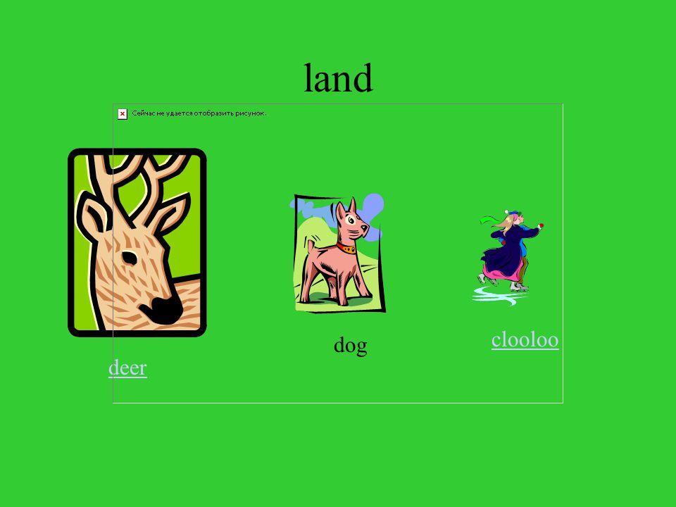 land deer dog clooloo