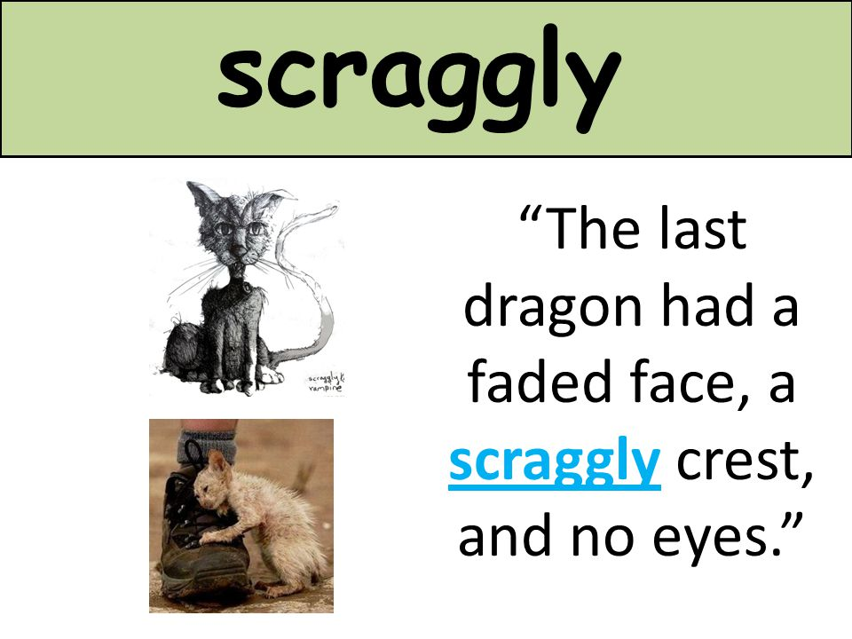 "scraggly ""The last dragon had a faded face, a scraggly crest, and no eyes."""