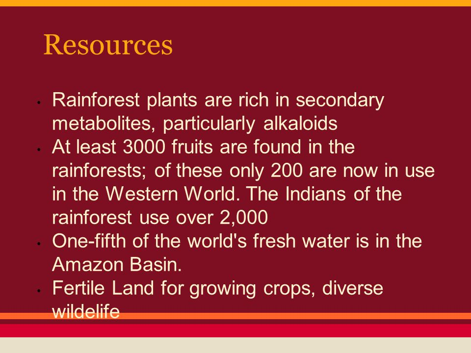 Resources Rainforest plants are rich in secondary metabolites, particularly alkaloids At least 3000 fruits are found in the rainforests; of these only 200 are now in use in the Western World.