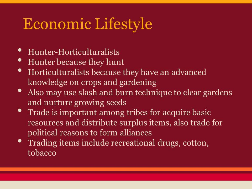 Economic Lifestyle Hunter-Horticulturalists Hunter because they hunt Horticulturalists because they have an advanced knowledge on crops and gardening Also may use slash and burn technique to clear gardens and nurture growing seeds Trade is important among tribes for acquire basic resources and distribute surplus items, also trade for political reasons to form alliances Trading items include recreational drugs, cotton, tobacco