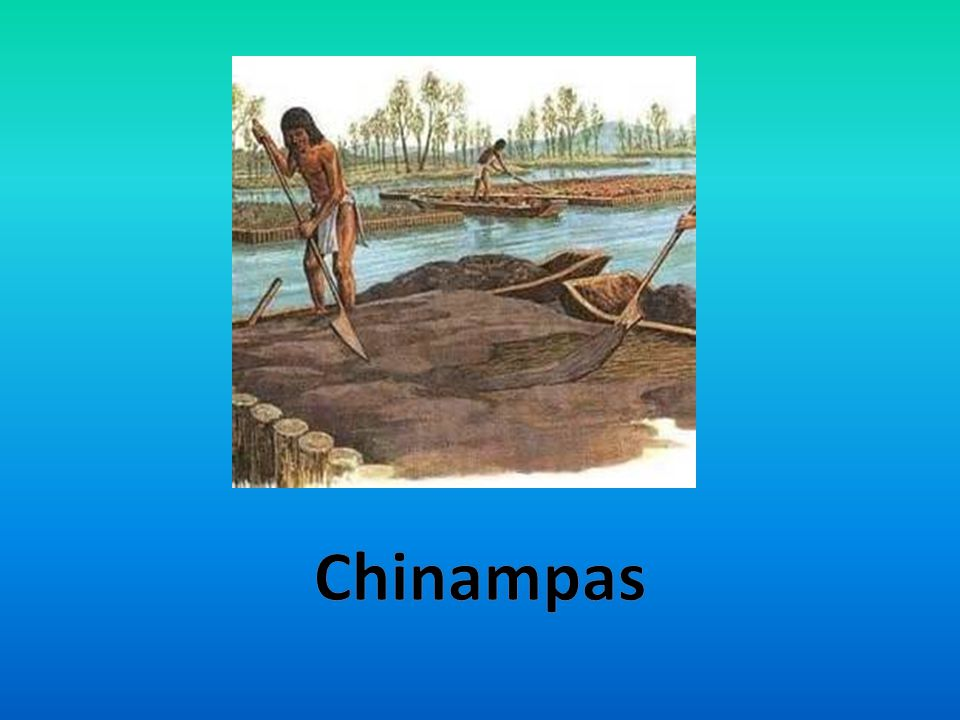 -Floating gardens -Built to grow crops on Lake Texcoco's water -To make a chinampa they had to make something that's called a wattle -Trees were planted at the corners -Arranged in a grid -Rested only a few feet above water Chinampas