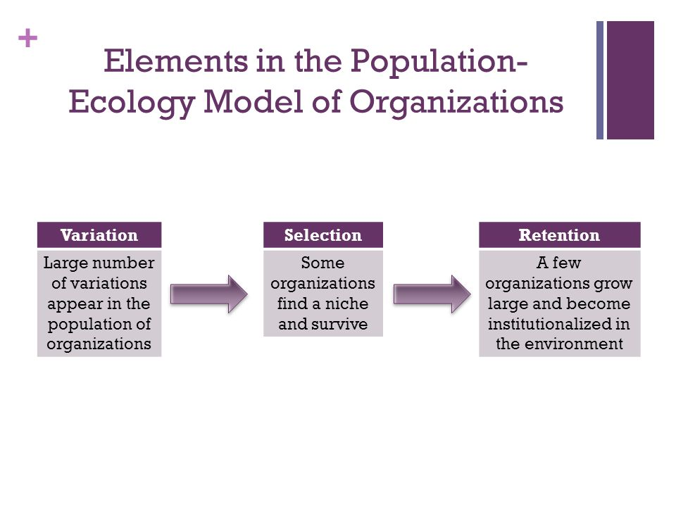 + Elements in the Population- Ecology Model of Organizations Variation Large number of variations appear in the population of organizations Selection