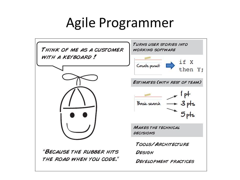 Agile Programmer