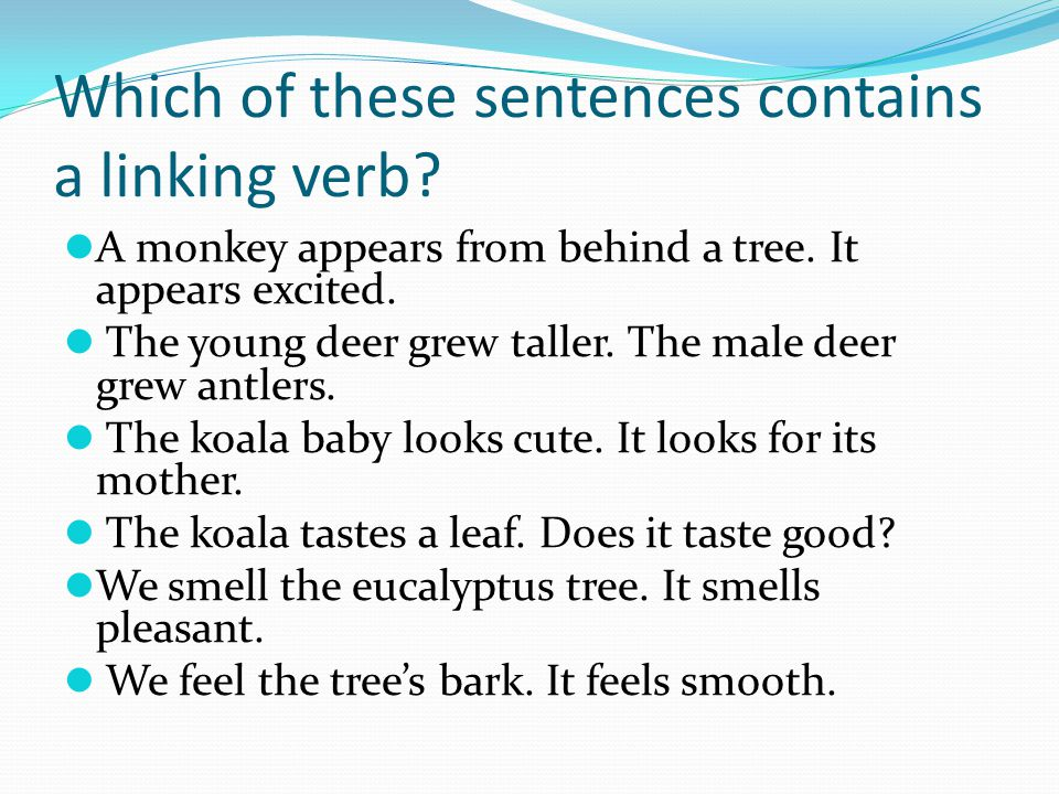 Which of these sentences contains a linking verb. A monkey appears from behind a tree.