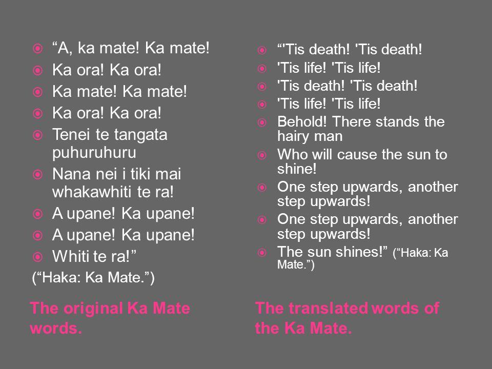 The original Ka Mate words. The translated words of the Ka Mate.