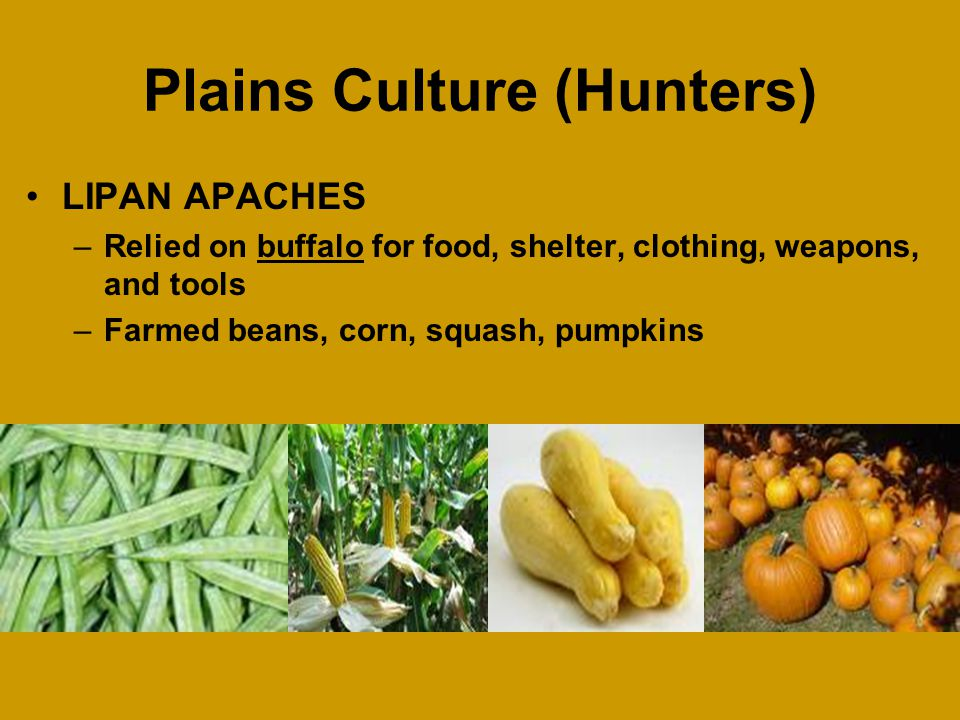 Plains Culture (Hunters) MESCALERO APACHES –Relied on buffalo for food, shelter, clothing, weapons, and tools –Wore high boots made of leather