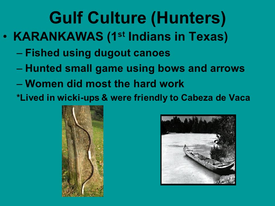 Gulf Culture (Hunters) COAHUILTECANS –Hunted deer, rabbit, buffalo –Gathered beans, nuts, berries, cacti, worms, lizards, etc. –Nomadic and lived in w