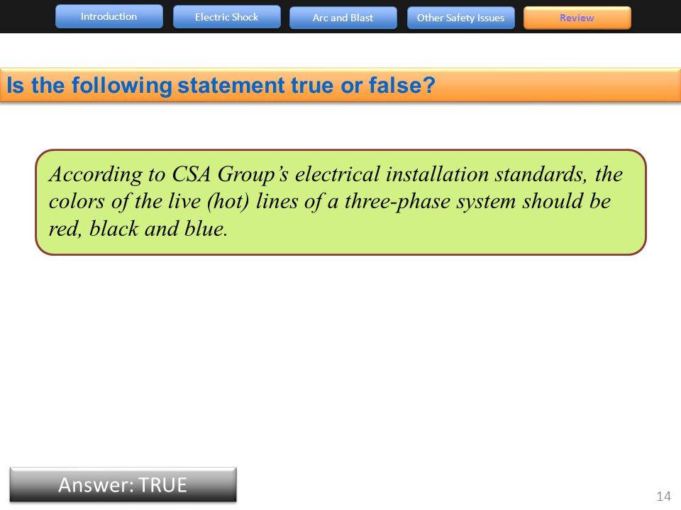 Introduction Arc and Blast Other Safety Issues 14 Review Electric Shock Answer: TRUE Is the following statement true or false.