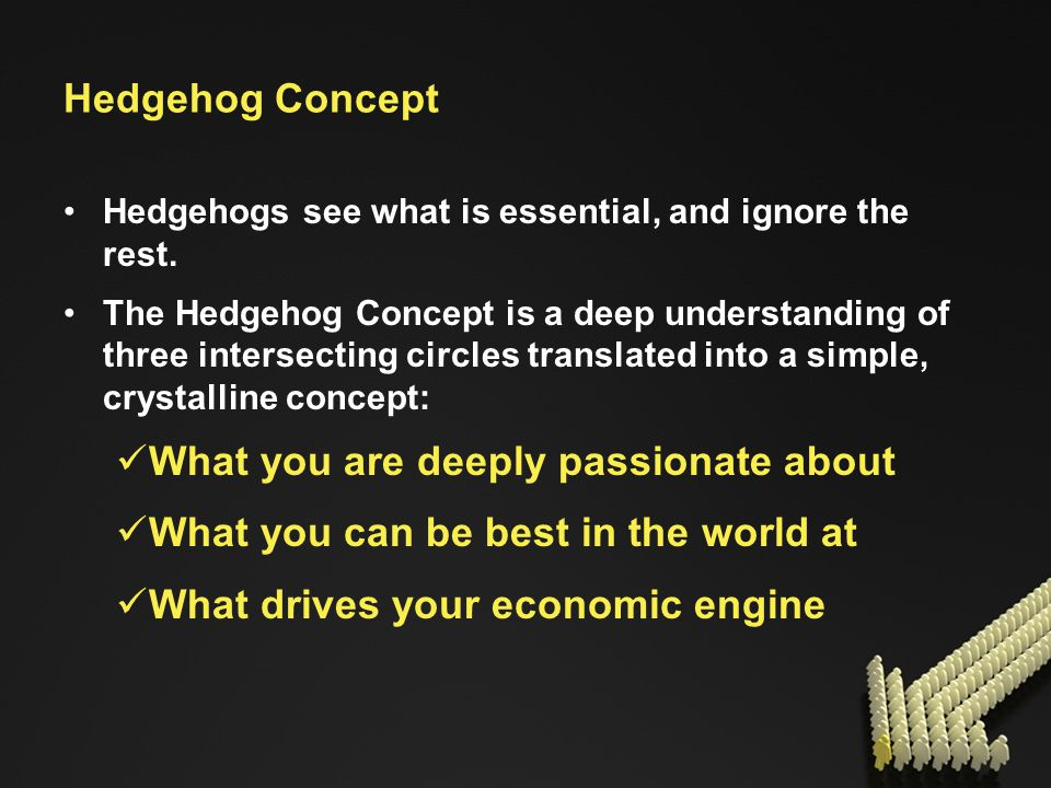 Hedgehog Concept Hedgehogs see what is essential, and ignore the rest.