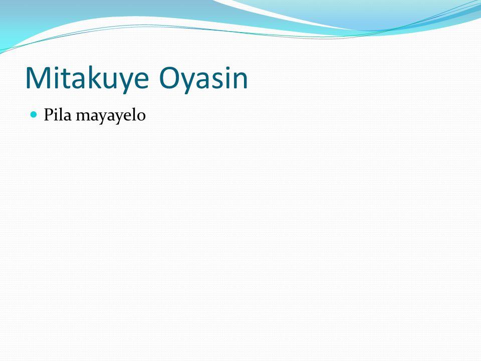 Mitakuye Oyasin Pila mayayelo
