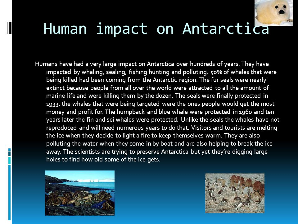 Human impact on Antarctica Humans have had a very large impact on Antarctica over hundreds of years.