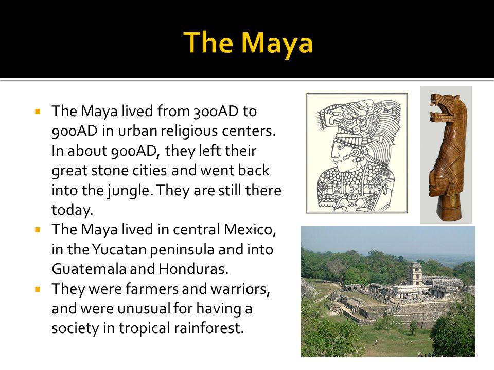  The Maya lived from 300AD to 900AD in urban religious centers. In about 900AD, they left their great stone cities and went back into the jungle. The