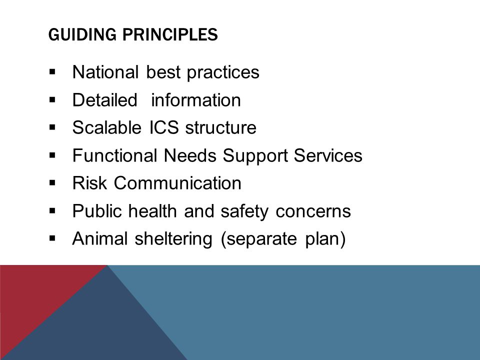 GUIDING PRINCIPLES  National best practices  Detailed information  Scalable ICS structure  Functional Needs Support Services  Risk Communication  Public health and safety concerns  Animal sheltering (separate plan)