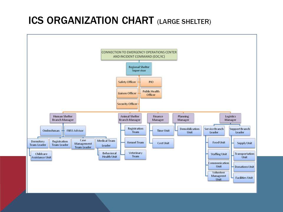 ICS ORGANIZATION CHART (LARGE SHELTER)
