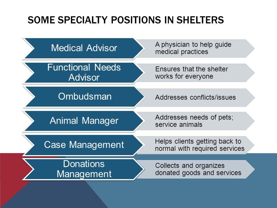 SOME SPECIALTY POSITIONS IN SHELTERS Medical Advisor A physician to help guide medical practices Functional Needs Advisor Ensures that the shelter works for everyone Ombudsman Addresses conflicts/issues Animal Manager Addresses needs of pets; service animals Case Management Helps clients getting back to normal with required services Donations Management Collects and organizes donated goods and services