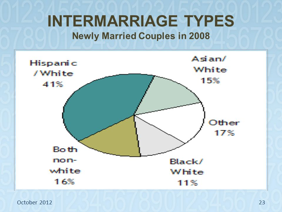 INTERMARRIAGE TYPES Newly Married Couples in 2008 October 201223