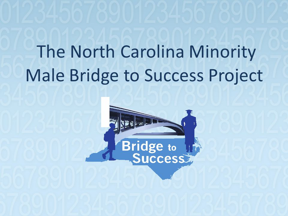 The North Carolina Minority Male Bridge to Success Project