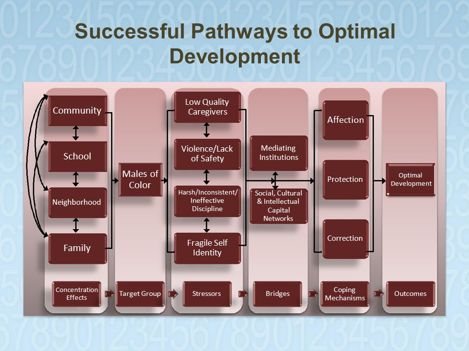 Successful Pathways to Optimal Development Community Low Quality Caregivers Affection Mediating Institutions Protection Optimal Development School Males of Color Neighborhood Violence/Lack of Safety Harsh/Inconsistent/ Ineffective Discipline Social, Cultural & Intellectual Capital Networks Family Fragile Self Identity Correction Concentration Effects Target GroupStressorsBridges Coping Mechanisms Outcomes