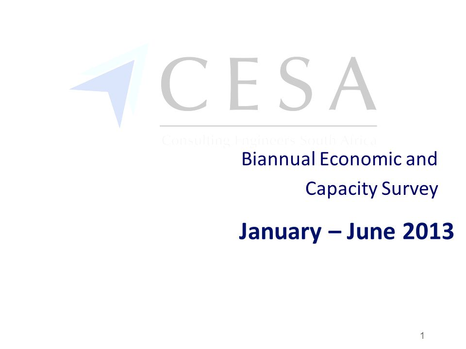 January – June 2013 Biannual Economic and Capacity Survey 1