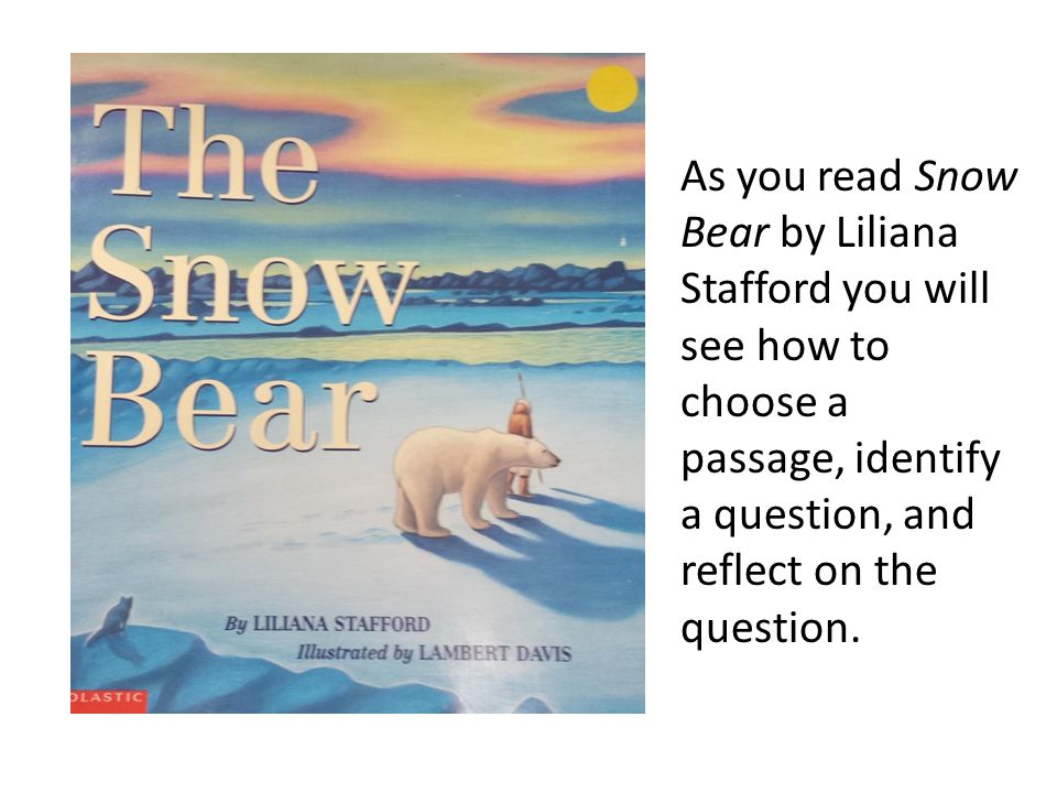 As you read Snow Bear by Liliana Stafford you will see how to choose a passage, identify a question, and reflect on the question.
