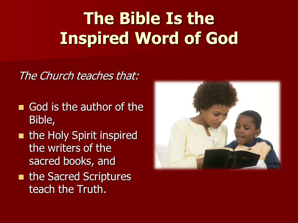 The Bible Is the Inspired Word of God The Church teaches that: God is the author of the Bible, God is the author of the Bible, the Holy Spirit inspire
