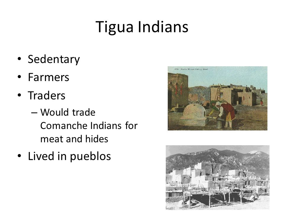 Tigua Indians Sedentary Farmers Traders – Would trade Comanche Indians for meat and hides Lived in pueblos
