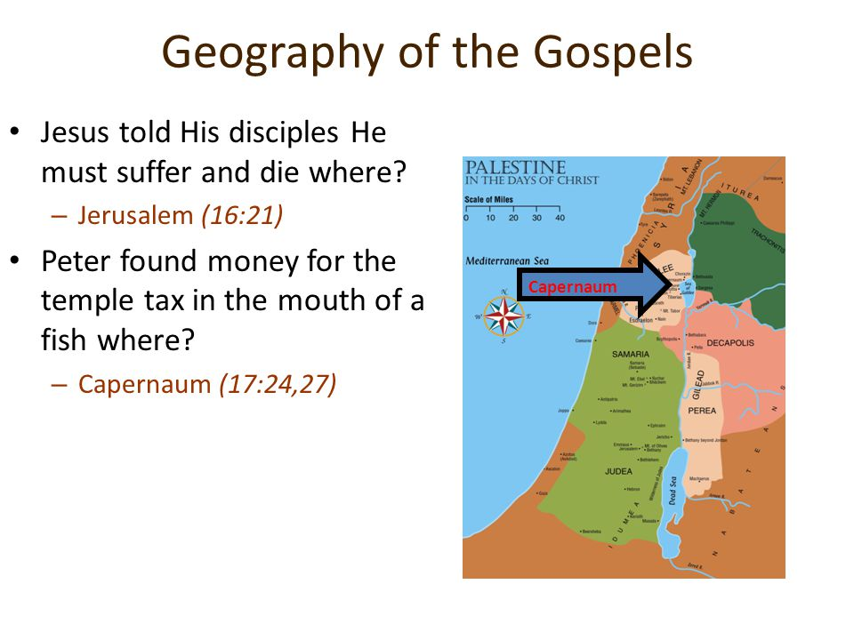 Geography of the Gospels Jesus told His disciples He must suffer and die where? –J–Jerusalem (16:21) Peter found money for the temple tax in the mouth